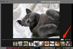 Microsoft Makes Pinterest Sharing Social Button On Bing Image Search  Microsoft Makes Pinterest Sharing Social Button On Bing Image Search  http://getwere.com/microsoft-makes-pinterest-sharing-social-button-on-bing-image-search/  www.getwere.com