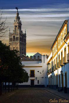 Patio de Banderas. Sevilla