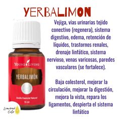 Yl Oils, Yl Essential Oils, Young Living Essential Oils, Esential Oils, Healthy Oils, Young Living Oils, Doterra, Tips, Essential Oils