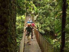 De vuelta a las labores con alegría! Les deseamos éxitos y a seguir avanzando siempre! Rainforest Adventures Costa Rica.