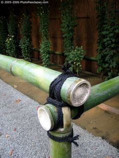 Just love this look.  I see now the reason my bamboo tomato trellis didn't last.  I used twine.  They use rope.