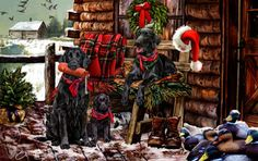 """New for 2014! Flat Coated Retriever Christmas Holiday Cards are 8 1/2"""" x 5 1/2"""" and come in packages of 12 cards. One design per package. All designs include envelopes, your personal message, and choice of greeting.Select the inside greeting of your choice from the menu below.Add your custom personal message to the Comments box during checkout."""