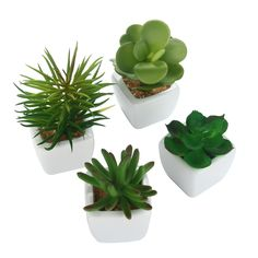 niceEshop(TM) 4 Pcs Mini Plantes Succulentes Artificielles avec Pot en Céramique (Vert): Amazon.fr: Cuisine & Maison