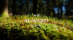 See related links to what you are looking for. Beautiful Names Of Allah, Allah Names, Valentino Rossi, Wallpaper Backgrounds, Wallpapers, Neon Signs, Photography, Outdoor, Health