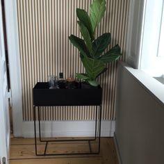 #fermliving De Ferm Living Plantbox is een mooi object voor planten en accessoires. Kom maar langs in onze winkel in Utrecht om te kijken naar deze plantbox. Emma b Oudegracht 218 / Hoek Hamburgerstraat Utrecht