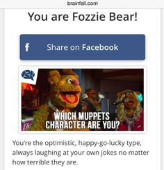 Meow facebook quizzes