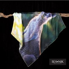Miss Roo. Sea-Nik's luxury silk scarves show casing Australia's wonderful Eastern Grey Kangaroo. This scarf is the perfect holiday gift or souvenir. Local Photographers, Silk Scarves, Tie Dye Skirt, Kangaroo, Sea, Luxury, Image, Beautiful, Holiday