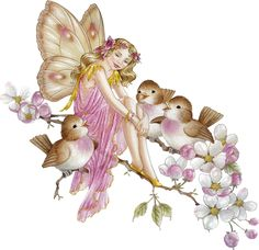 Pretty Blossom Flower Fairy with Birds Magical Creatures, Fantasy Creatures, Fairy Clipart, Kobold, Elves And Fairies, Fairy Pictures, Beautiful Fairies, Flower Fairies, Fairy Art