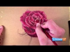 ▶ How to Draw a Rose with Colored Pencils - YouTube