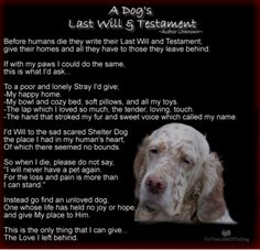 A dogs last will and testament