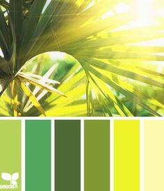 Color palettes from photos color, tropical colors и design seeds. Colour Pallette, Colour Schemes, Color Combos, Color Patterns, Tropical Colors, Summer Colors, Color Balance, Design Seeds, Color Blending