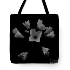 Cuckooflower Tote Bag by Sverre Andreas Fekjan.  The tote bag is machine washable, available in three different sizes, and includes a black strap for easy carrying on your shoulder.  All totes are available for worldwide shipping and include a money-back guarantee. Printed Tote Bags, Nature Images, Bag Sale, Totes, Reusable Tote Bags, Shoulder, Easy, Prints, Men