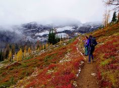 Pacific Northwest Seasons: Northwest Fall Hiking: Golden Larches on the Maple Pass Loop