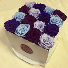 Roses ❤️❤️❤️ heart