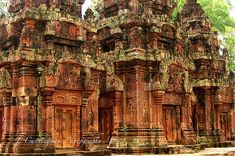 Temple ruins in Angkor wat, Cambodia Beautiful Places In The World, Places Around The World, The Places Youll Go, Wonderful Places, Places To See, Angkor Temple, Temple Ruins, Pamukkale, Angkor Wat Cambodia