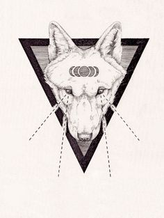 Vintage science journal and geometry inspired animals portraits by Peter Carrington pinterest.com