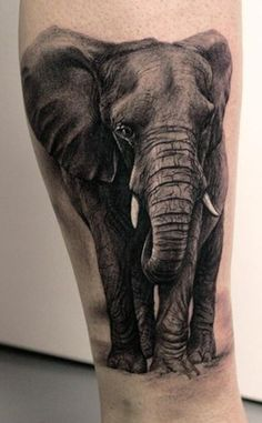 b/w elephant tattoo