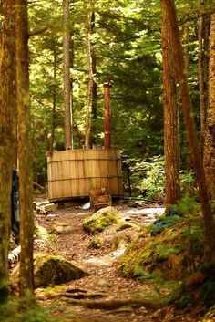 hot tub in the woods, great idea.  And Of course, while were at it, may as well add one of these!