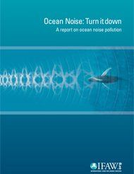 Ocean Noise: Turn it down Whale Song, Animal Welfare, Whales, United States, Ocean, Songs, Animals, Animales, Animaux