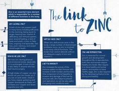 The link to zinc - Health 2000 Tissue Salts, Zinc Deficiency, No Response, Vitamins, Link, Health, Health Care, Salud