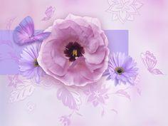 Lavender World - wallpapers, Free wallpapers Desktop Themes -- American Greetings