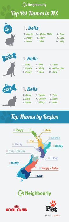 I've never heard of a dog named Balla.