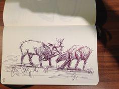Schnellskizze im Moleskine - zwei Hirsche