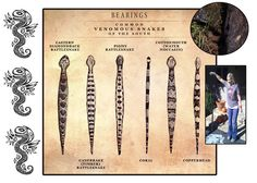 Snake identification chart -  Good to know for when your gardening