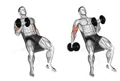 Big Biceps Workout, Back And Bicep Workout, Back And Biceps, Dumbbell Workout, Bodybuilding Training, Bodybuilding Workouts, Men's Bodybuilding, Aerobics Workout, Gym Workout Tips