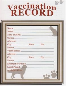 Customizable vaccination cards for dog breeders puppy for Pet health record template