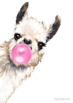 Bubble Gum Sneaky Llama Framed Art Print by Big Nose Work - Conservation Pecan - Llama Drawing, Llama Pictures, Llama Images, Blowing Bubble Gum, Framed Art Prints, Canvas Prints, Canvas Artwork, Llama Arts, Big Noses