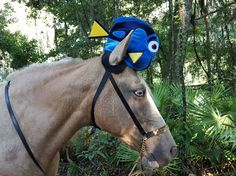 Blue and Yellow Fish Hat for Horse or Pony  by MyBuddyBling