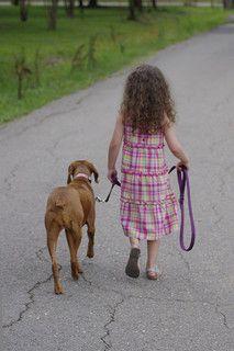 Dog Leash Walking, Teach a Dog to Walk on a Leash    dog training, dog training tips, walking with dog, teach dog to walk, teach dog to walk on leash, puppy on leash, teach puppy to walk on leash, puppy training, dog training    #dogtraining #puppytraining