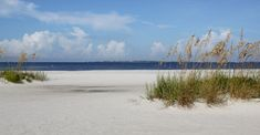 MustDo.com | Bowditch Point Park & Beach Fort Myers Beach, FL USA. Must Do Visitor Guides.
