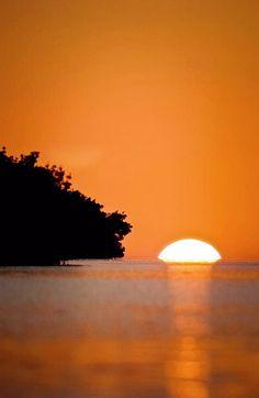 ✯ Copper Sunset - Everglades