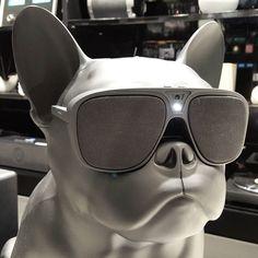 An awesome Virtual Reality pic! Virtual Reality - #vr #armani #fashion #milano #italy #virtualreality #dog #blackdog #emporioarmani #aerobull by jbisbalgram check us out: http://bit.ly/1KyLetq