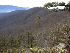 Looking down Big Piney Ridge from Montreat toward the Swannanoa Mnts