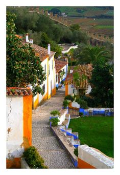 Obidos Old Street - Óbidos / PORTUGAL   by FilipaGrilo