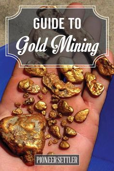 Want to know more about gold mining? If you want to know the some facts about gold you and some basics on gold mining, you're in for a treat!