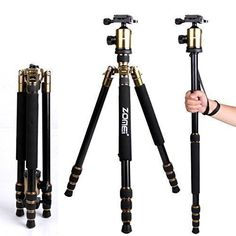 Introducing Zomei Z818 tripods 65 Compact Portable Magnesium Aluminum Detachable Monopod Professional Camera Tripod 360degree Ball Head Quick Release Plate  Carry Case for Digital Video DSLR CamerasGold. Great product and follow us for more updates!