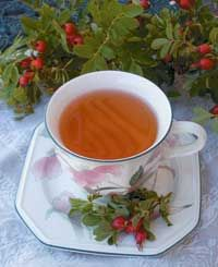 How to make rose hip tea, syrup, soup, and rose wine.  Also great explanation of health benefits.