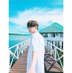 Hold me tight (wonwoo) Seventeen Soonyoung, Seventeen Wonwoo, Seventeen Debut, Seventeen Memes, Woozi, Mingyu Wonwoo, K Pop, Vernon Chwe, Rapper