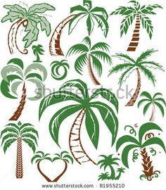 stock vector : Palm Tree Collection