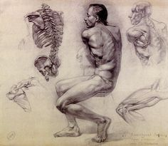 PDF HOGARTH ANATOMY DYNAMIC