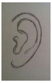 Easy ear pencil drawing doodle drawings, easy drawings, pencil drawings, how to draw Easy Pencil Drawings, Easy Doodles Drawings, Easy Disney Drawings, Cute Easy Drawings, Cool Art Drawings, Art Drawings Sketches, Realistic Drawings, Eye Drawings, Drawing With Pencil