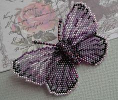 бабочка 1.jpg