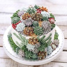 Most Beautiful Edible Creations You Won't Believe You Can Actually Eat: Don't let this wedding cake fool you. It looks like a real succulent garden, but it's edible! Pretty Cakes, Beautiful Cakes, Amazing Cakes, Edible Creations, Cake Creations, Cupcakes Succulents, Cake Boss, Bolo Tumblr, Cactus Cake