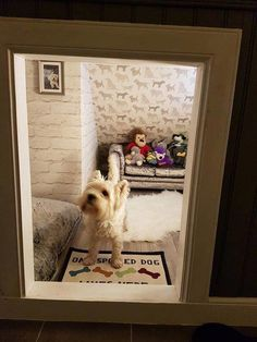 Dog spaces, Animal room, Room under stairs, Under stairs dog house, Dog rooms. Under Stairs Dog House, Space Under Stairs, Dog Bed Stairs, Animal Room, Dog Nook, Dog Room Decor, Dog Bedroom, Puppy Room, Dog Spaces
