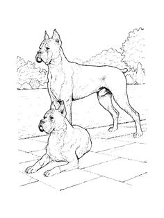 pin by marjolaine grange on coloriage chien pinterest