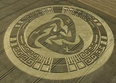 so perfect!   2011  Google Image Result for http://ginva.com/wp-content/uploads/2011/01/crop-circle-46.jpg